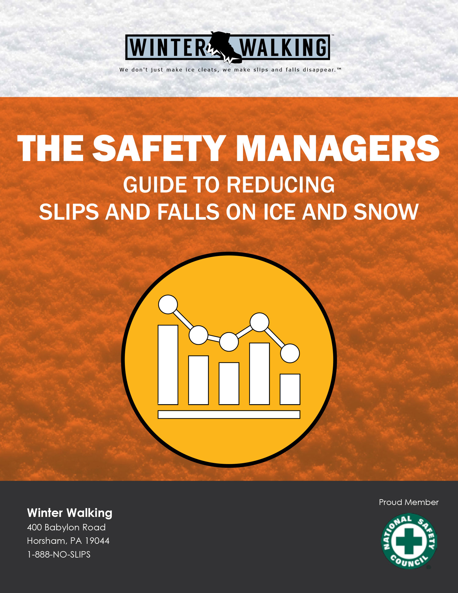Safety Managers Guide to Reducing Slips and Falls